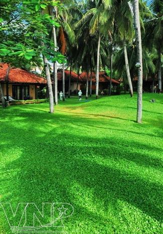 green tourism, mui ne, resorts, binh thuan