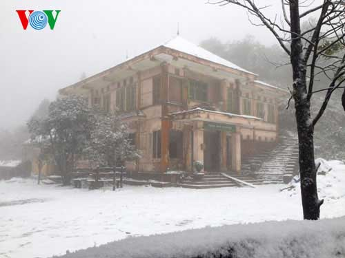 Snow, Sa Pa, Lao Cai, cold weather