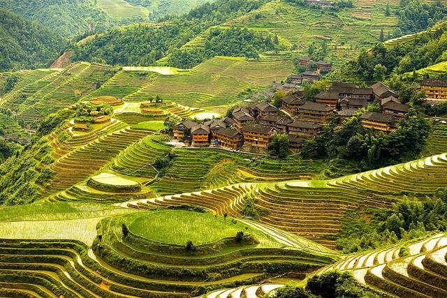The most beautiful terraces in the world news vietnamnet for Terrace farming in india