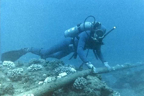 broken sea cable, Asia-America Gateway cable, vietnam internet