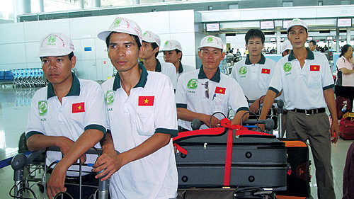 Vietnamese guest workers, outstanding young citizens, Transportation, Prime Minister