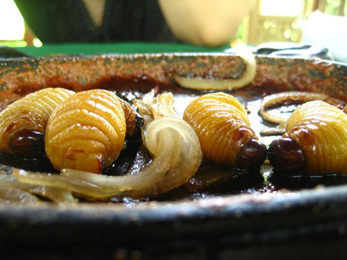 insects, food from insects, vietnam