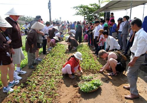tra que vegetable village, vegetable growing contest, hoi an, foreign tourists