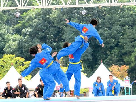 Five countries support Vietnam's martial art Vovinam at next SEA Games