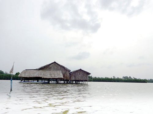Mekong Delta, Ca Mau, Thi Tuong Lagoon, homestay services, floating houses