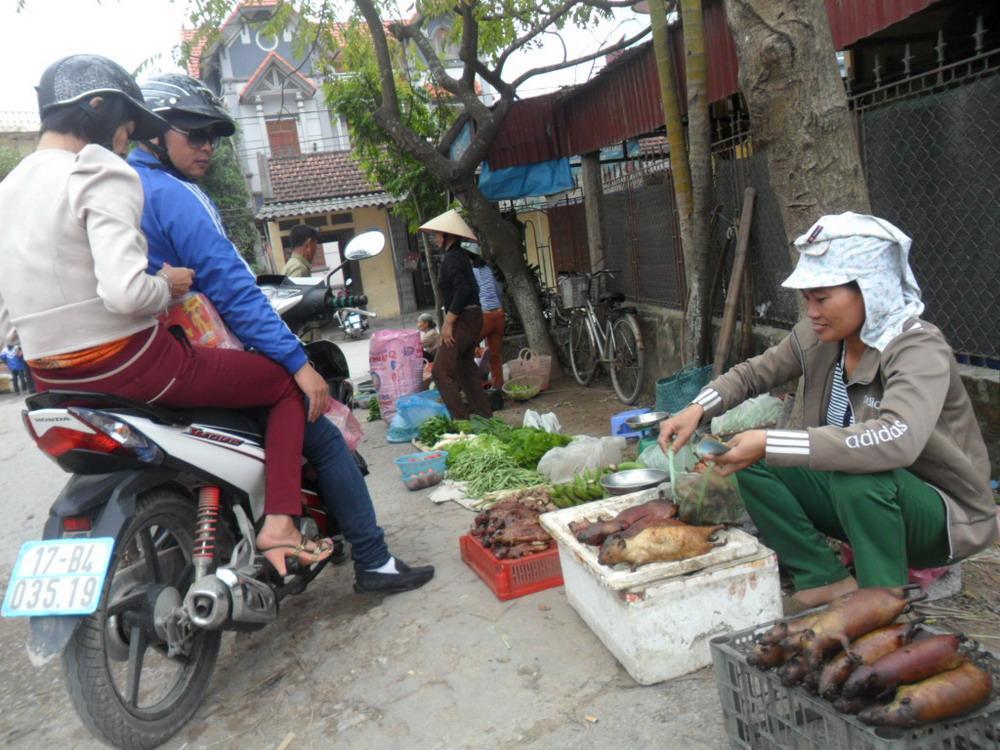 rat hunters, rat hunting, field mice, Kim Trung, rat meat