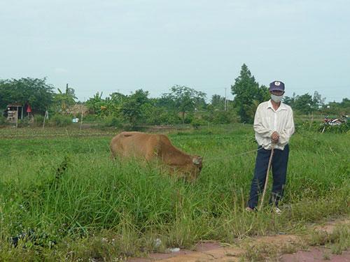 land, fallow, waste of land