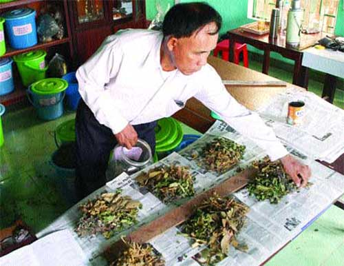Traditional herbal medicine, herbal treatments, traditional drugs