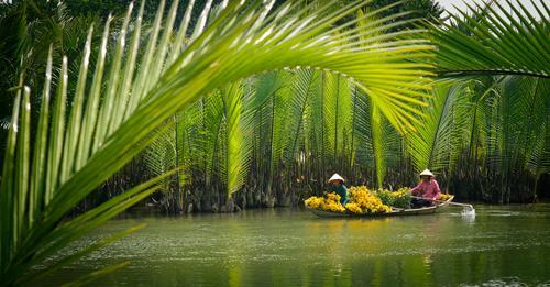 spring, vietnamese people, daily life in vietnam
