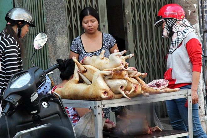 The silent disappearance of dog meat markets in Saigon