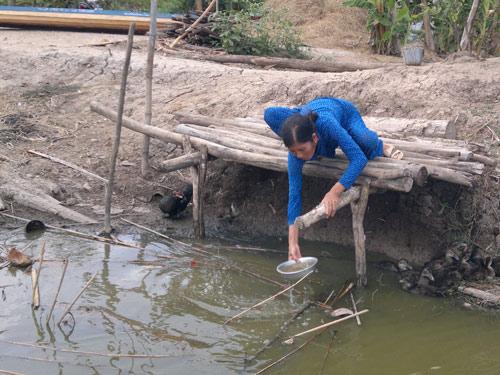 salinity intrusion, mekong delta