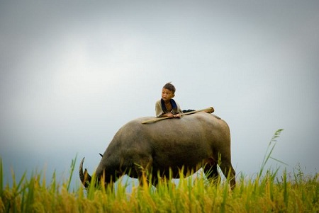 national geographic, your vietnam, vietnamese people, landscapes