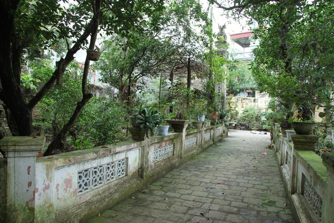 tay mo village, hollywood village