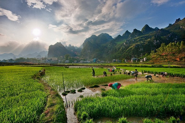 Ha Giang's beauty in the eyes of foreign photographer