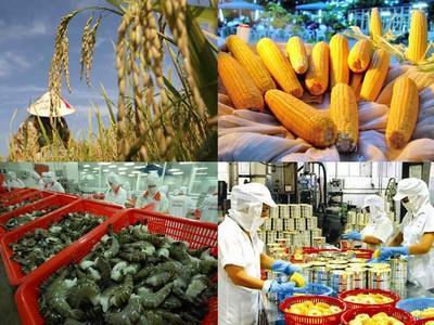 rice export, china, vietnam, east sea