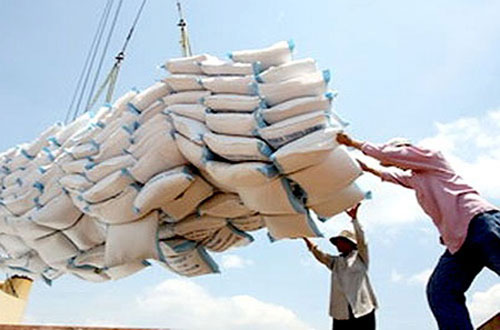 Stockpiling, high-quality rice, Mekong Delta, paddy prices, imported rice