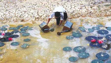 Mekong River, Mekong Delta, climate change, wetlands