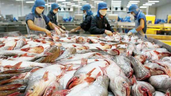 the catfish dispute Vietnam is still angry over the increased scrutiny its catfish industry is going to get as the usda takes over the regulatory duties of the fda home vietnam takes gripes on usda catfish inspection to wto the first step in filing a dispute.