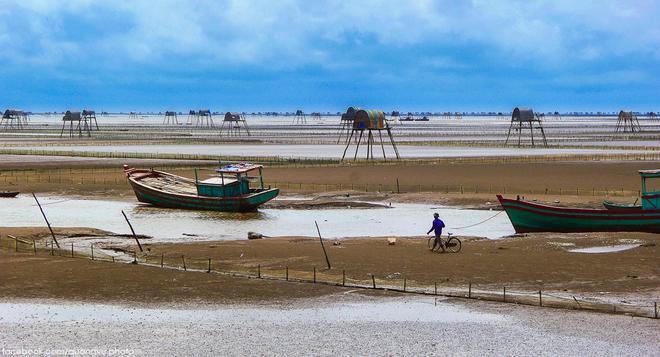 Dong Chau beach, Thai Binh province