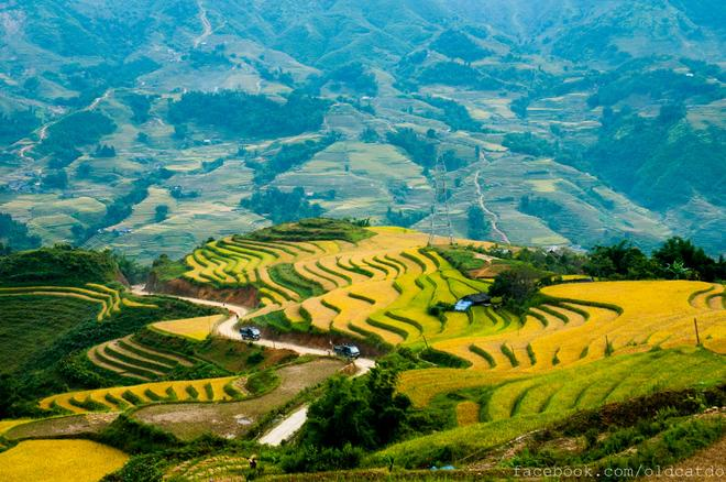 Sa Pa Terraced Fields On List Of The World 39 S Most Beautiful Places News Vietnamnet