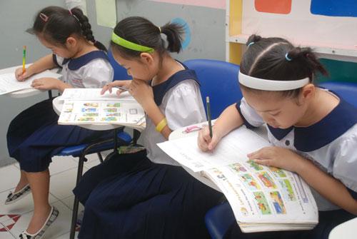 Vietnam, national program, MOET