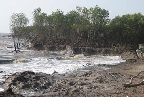 Mekong Delta, prevent erosion, build embankments