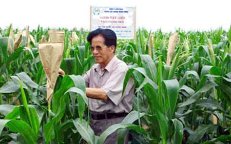 Genetically-modified technology no magic wand for Vietnam's agriculture