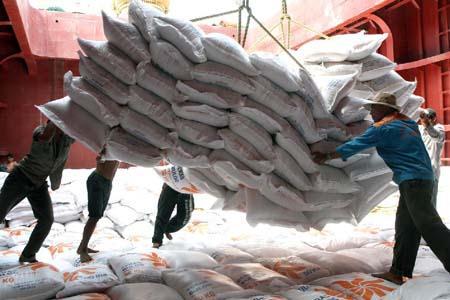 rice export, philippines
