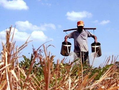 Mekong Delta, water shortage