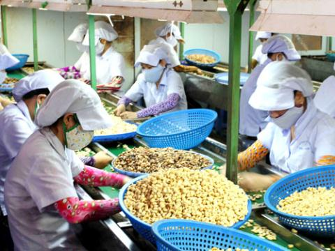 Vietnam touted as top agricultural producer but farmers still poor