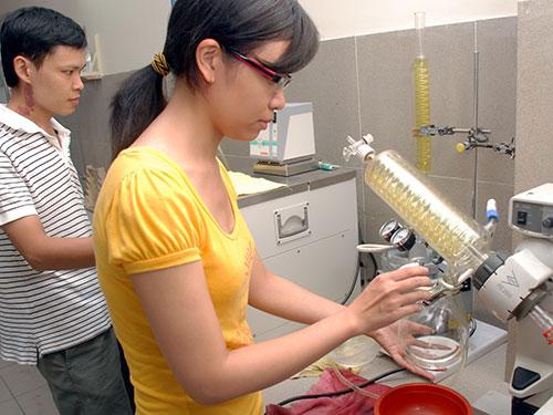 Vietnam, PhD, plagiarism