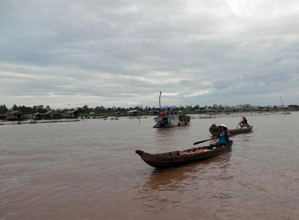 Hydropower dams, Mekong Delta