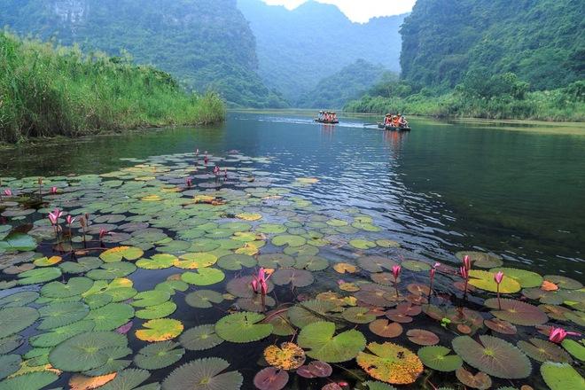 trang an, autumn, ninh binh, ngo dong river