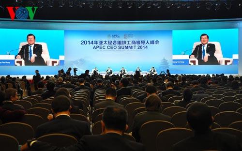 VN President addresses APEC CEO Summit 2014