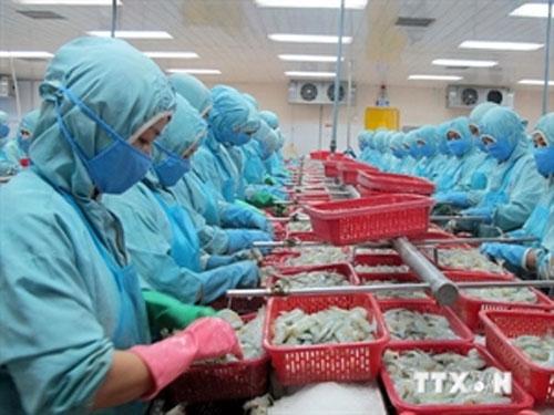Vietnam, shrimp, anti-dumping lawsuit