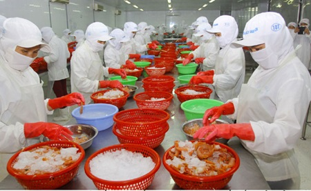Nafiqad, seafood export to Russia, Russia's Federal Service for Veterinary and Phytosanitary Surveillance, vietnamese seafood exporters, food hygiene criteria
