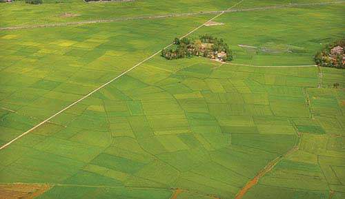 Farming, fertile investment soil, FDI in agriculture