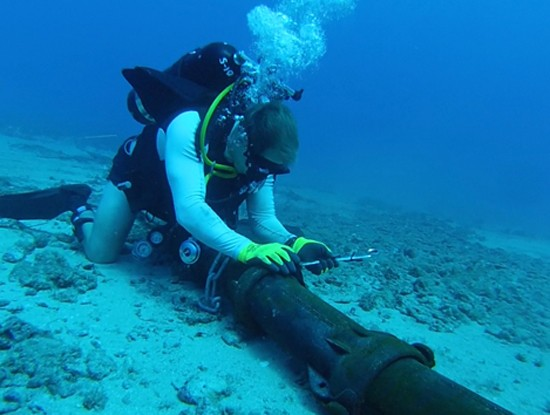 Repair of AAG submarine cable to be completed on January 23