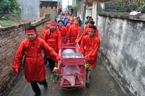nem thuong, pig-chopping festival