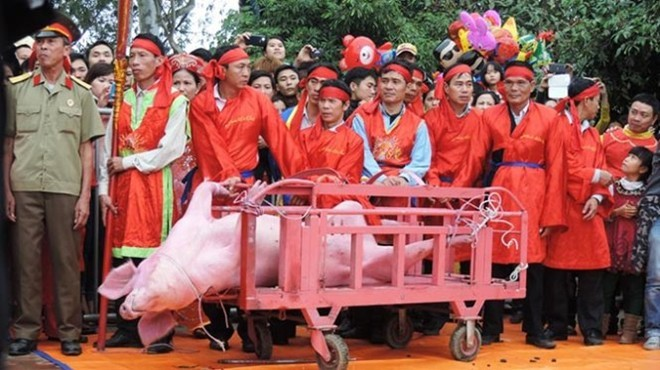 Pig-chopping festival: Vietnamese need to have opinions on culture