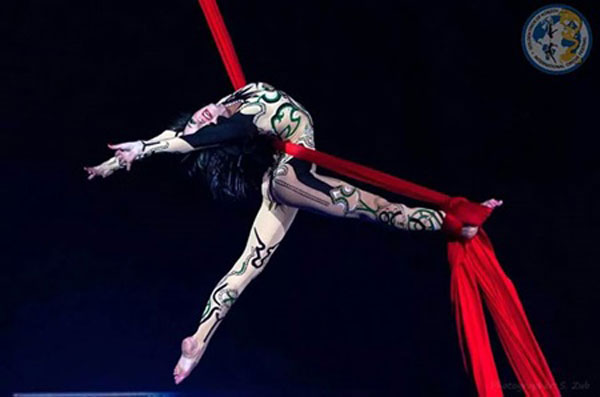 Circus troupe to launch VN tour - Vietnam Daily News