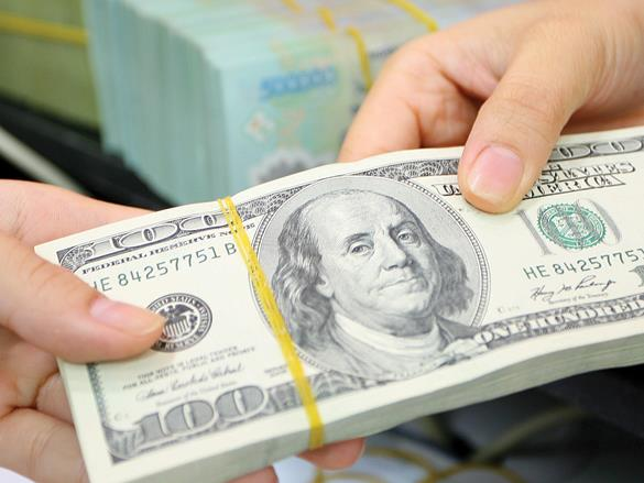 Dollar appreciates, but exchange rate may not be adjusted in first half of year