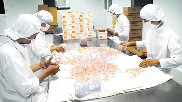 Vietnamese pharmaceutical companies challenged by Indian firms