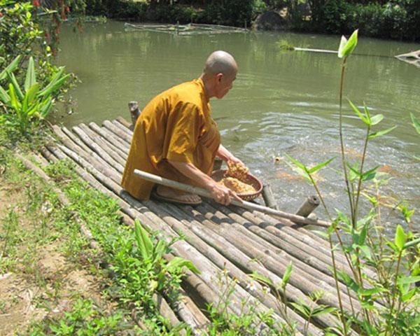 Buddhist monk, Son Tra Mountain, Quan The Am Pagoda