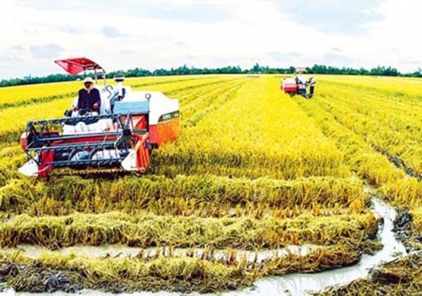 Private enterprises, investors, agricultural industry, agriculture insurance