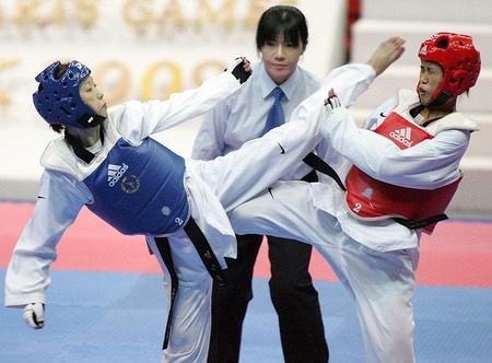 Vietnam to take part in world Taekwondo championships