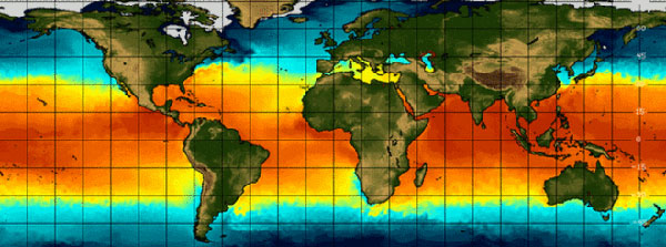 El Nino could 'disrupt food markets'