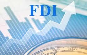 Vietnam, FDI, the US, export turnover