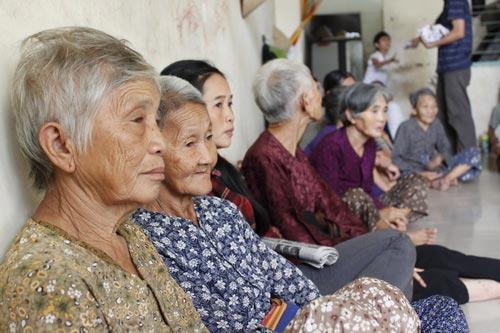 Aging population, vietnamese population