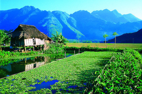 Special Trip To Mai Chau A Fragrant Flower Of Muong Land
